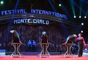 Circo Mundial e Luna Park voltam com grandes novidades