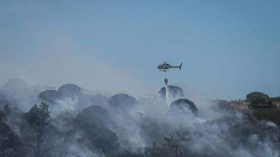Fogo que deflagrou em Idanha-a-Nova corta EN 240 e passa para Espanha