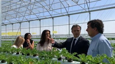 """Incentivos ao investimento permitem """"dinamizar a economia e criar emprego"""", diz Pedro Calado"""