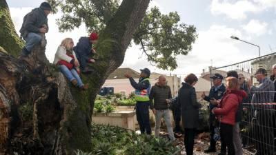Ocuparam árvore mas abandonaram protesto dez horas depois