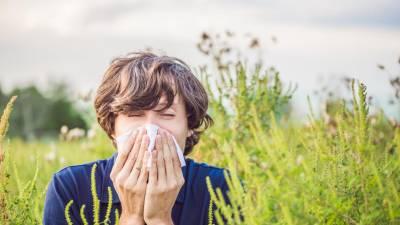 Pólens com níveis baixos na Madeira