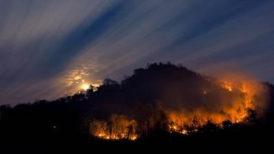 Porto Bay cede terrenos à Madeira para faixa corta-fogo